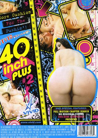 back - 40 Inch Plus 2