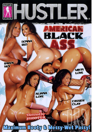 Large Photo of American Black Ass