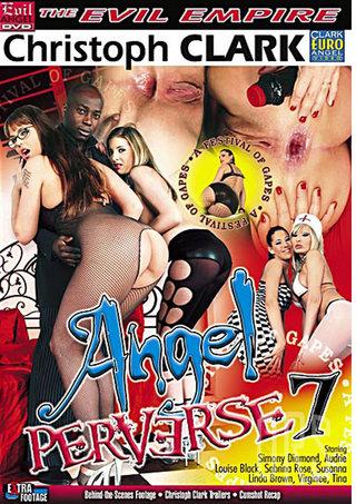 Large Photo of Angel Perverse 7