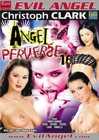 Large Photo of Angel Perverse 16