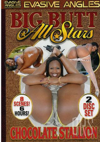 Large Photo of Big Butt All Stars Chocolate Stallio