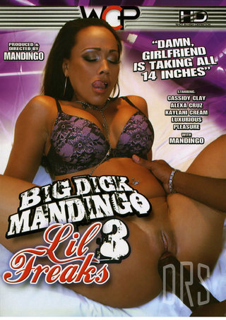 Large Photo of Big Dick Mandingo Lil Freaks 3
