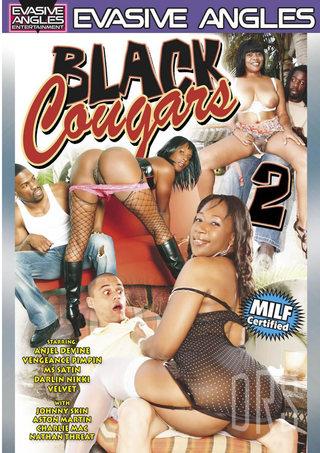 Large Photo of Black Cougars 2