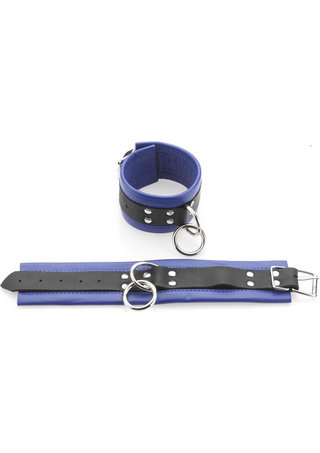 Large Photo of Black and Blue Restraints - Medium