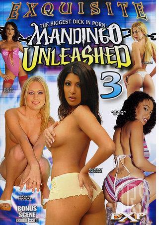 Large Photo of Mandingo Unleashed 3