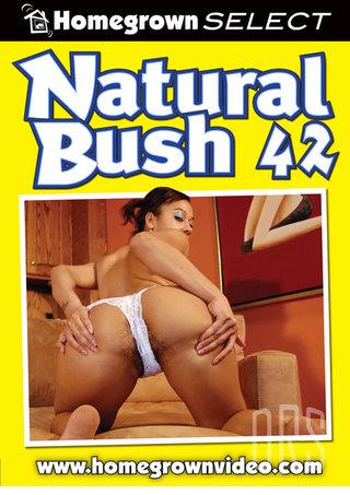 Large Photo of Natural Bush 42