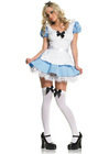 Adorable Alice In Dreamland Costume - Small